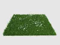 Maya Realistic Grass instancing low poly
