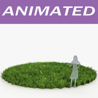 3d lawn grass animation