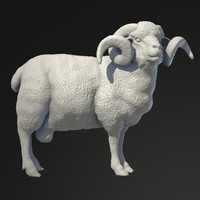 3d sculpture ram model