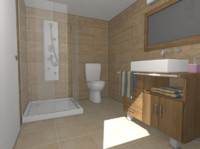 3d bathroom polys shower model