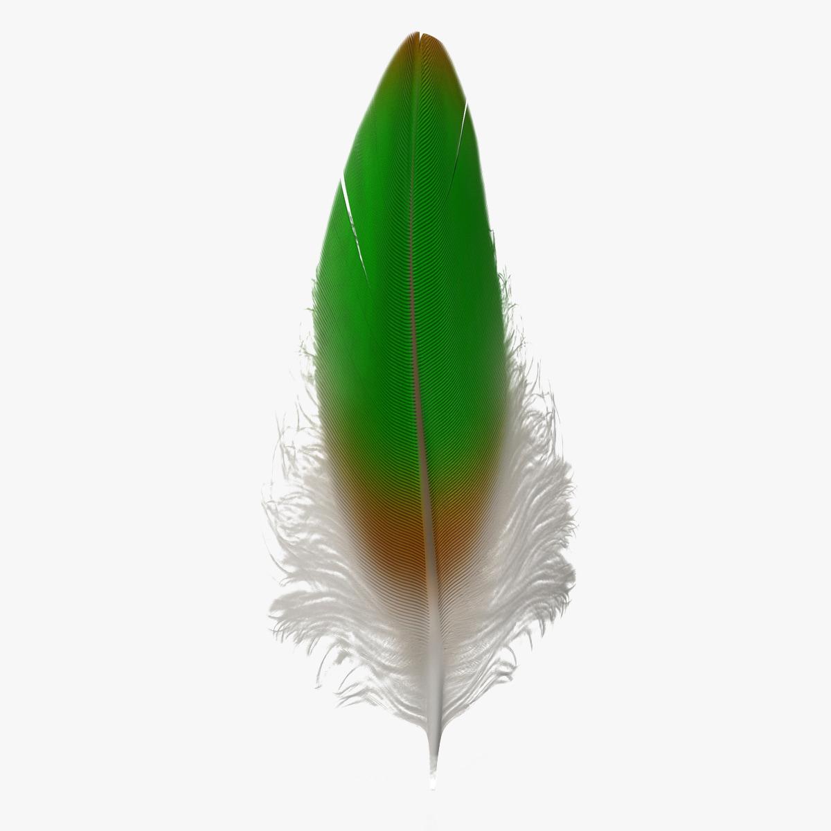 Feather_95.jpg