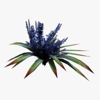 fbx alien plant