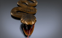 Snake by Swp