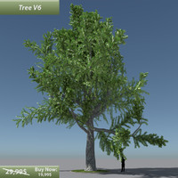 3ds max tree oak v6