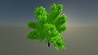 3d - black walnut tree
