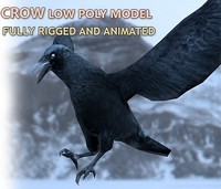 3d crow rigged animations model