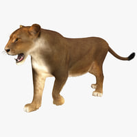 3ds max lioness pose 2 fur