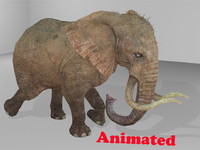 3d model elephant animal rigged