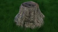 3d medium stump model