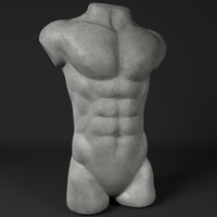 3d model male torso