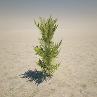 small plant 3d max