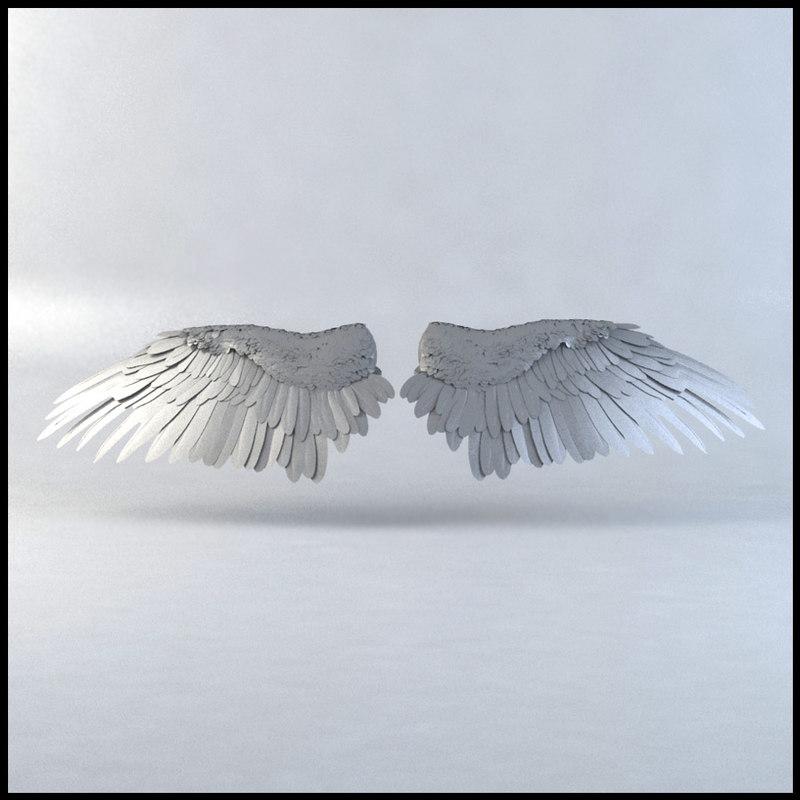 WingsBack_01a.jpg