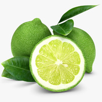 realistic lime 3d model