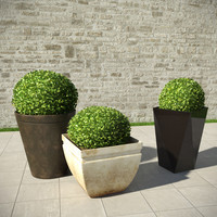 3d model of shrubs pots