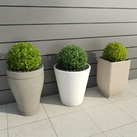 3d shrubs pots 3 model