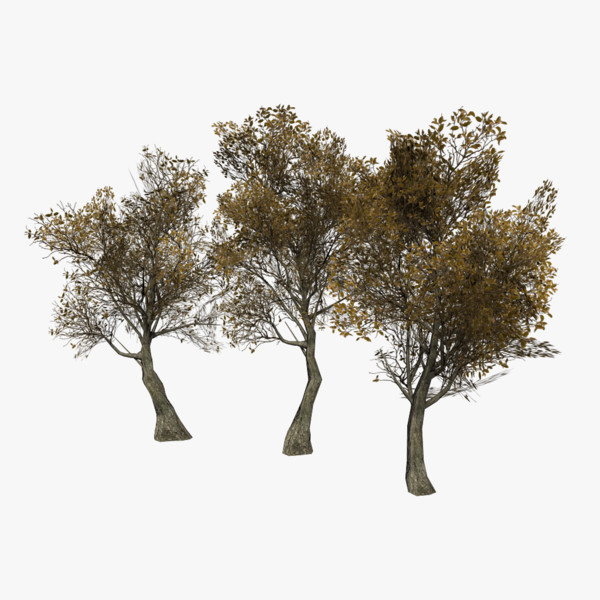 3d model games lods included tree