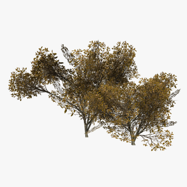 games lods dual trees 3d obj
