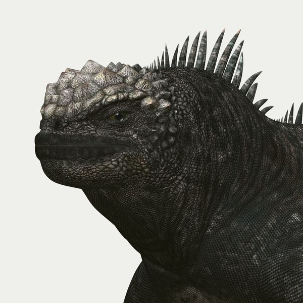3d marine iguana model