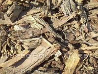 cut wood5.jpg