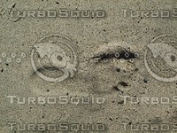 sand footprint.jpg