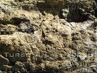 rock face42.jpg