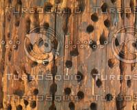 holey wood.jpg