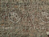 stone walk.jpg