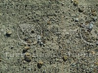 pebbled ground.jpg