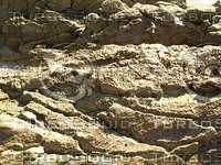 jagged rock ground.jpg