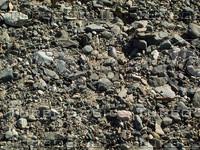 pebbles rocks.jpg