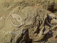 drity rock.jpg