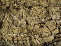 craggy cracked stone rock.jpg