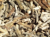 piled wood sticks.jpg