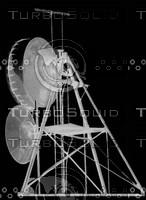antennae 16lb.jpg