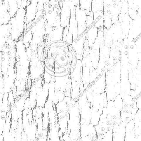 bark01b.jpg