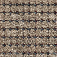carpet001 medium.jpg