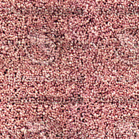 carpet008 large.jpg