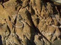 eroded sea stone.jpg