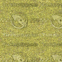 yellow grass.jpg