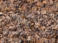 bark mulch.jpg