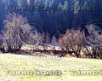 landscapes 006.jpg