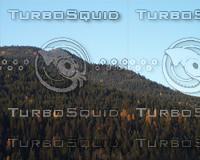 landscapes 026.jpg