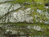 mossy rock88.jpg