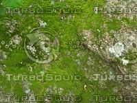 mossy rock 2.jpg