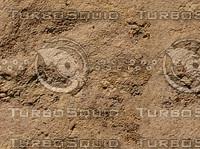 tawny sandstone.jpg