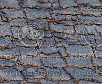 aged blue shingles.jpg