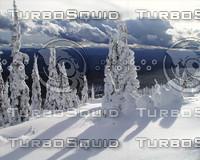 snow011.jpg