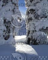 snow026.jpg