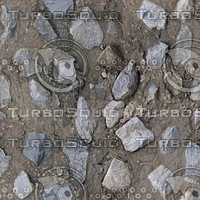 stones in mud.jpg
