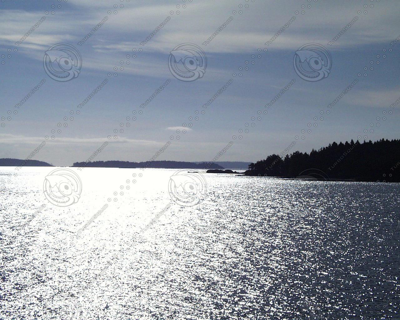 water041.jpg